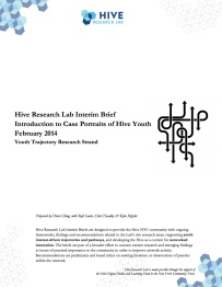 HRL YT Interim Brief #1